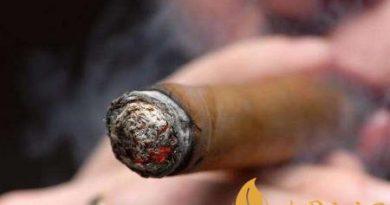 新手需要知道哪些雪茄知识 雪茄常见的知识科普!
